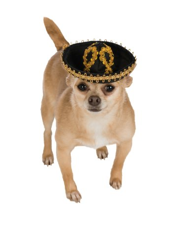 Rubie's Pet Sombrero, Small to Medium, Gold and ()