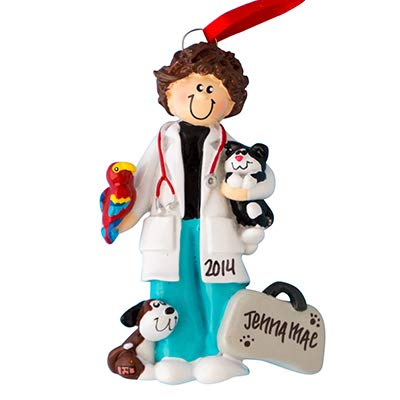 Veterinarian Girl Personalized Ornament - (Unique Christmas Tree Ornament - Classic Decor for A Holiday Party - Custom Decorations for Family Kids Baby Military Sports Or Pets)