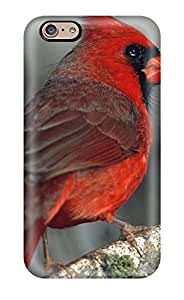 Faddish Bird Case Cover For Iphone 6