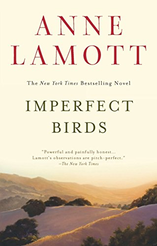 Image of Imperfect Birds: A Novel