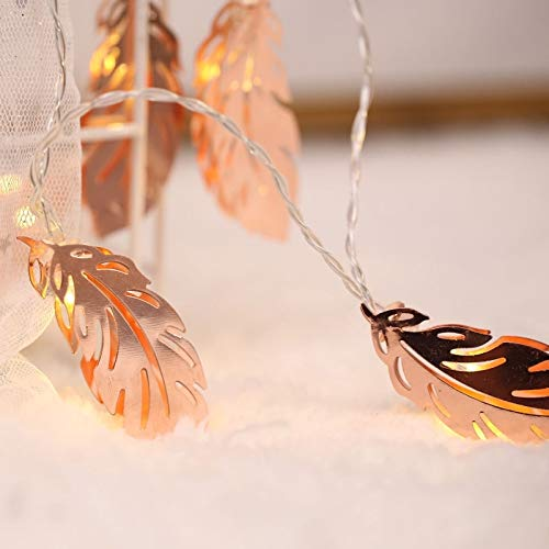 DIMDIM MYCHOME 3m New Gold Feather USB Plug Romantic LED String Holiday Light, 20 LEDs Teenage Style Warm Fairy Decorative Lamp for Christmas, Wedding, Bedroom