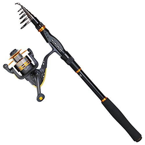Goture Fishing Rod and Reel Combos Telescopic Fishing Pole with Spinning Reel for Saltwater Freshwater Fishing (9'10''/3.0M Rod + GT3000S)