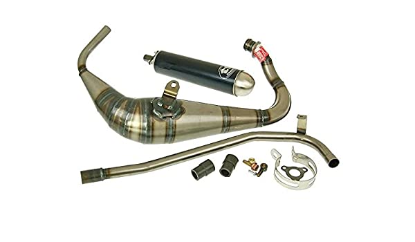 Escape tecni Gas g de Caja para GPR50, Rs50 (D50B0): Amazon.es: Coche y moto