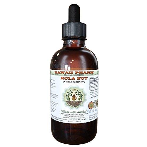 Kola nut Alcohol-FREE Liquid Extract, Kola nut (Cola Acuminate) Whole Nut Glycerite Herbal Supplement 2 oz