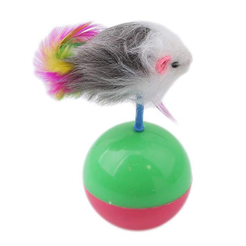 Amazon.com : Best Quality Durable pet cat Toys Favorite Fur Mouse Tumbler Plastic Toys Balls for Cats Dogs Play speelgoed kat Interactive Toys : Pet ...