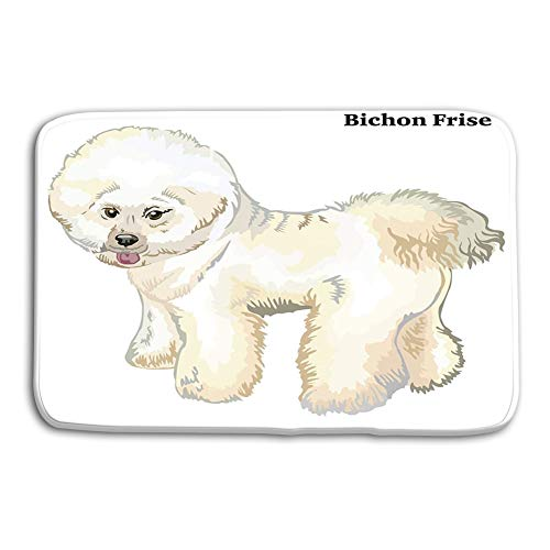 zexuandiy Area Rugs Modern Soft Non-Slip Floor Mats Doormat Carpet for Bedroom 23.6x15.7 Colored Decorative Standing Portrait Dog Bichon Frise Profile Colorful Isolated White Background