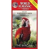 World Almanac: Save Endangered Species - Macaw