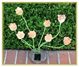 Sohodecor Decorative Garden Tulip Solar Lights 8 LED