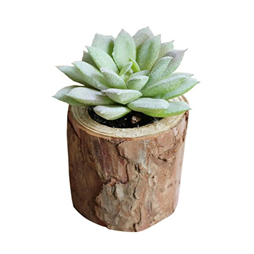 Haotfire Modern Mini Artificial Succulent Plants Potted In Pots For Home Decor Gallon Potted Plant