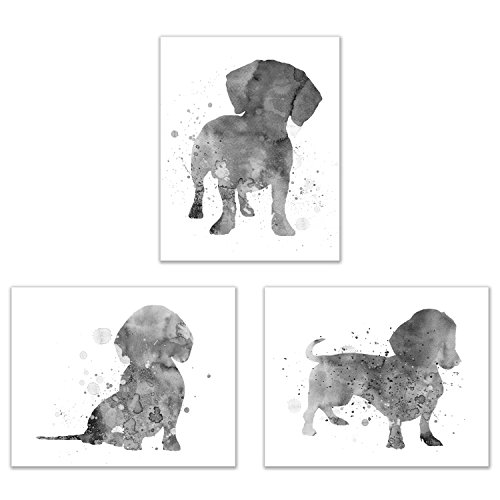 Dachshund Wall Art Decor - Set of 3 Prints (8x10) - Poster Photos - Puppy Dog (Dachshund Wall)