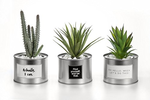 OPPS Mini Artificial Plants Plastic Green Grass Cactus With Special Silver Can Pot Design For Home Décor – Set Of 3