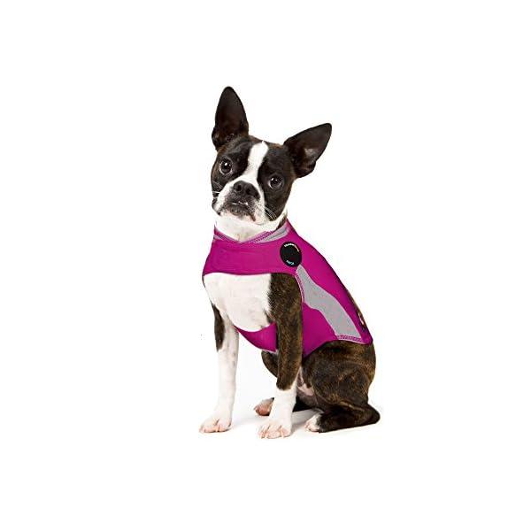 ThunderShirt Polo Dog Anxiety Jacket 1
