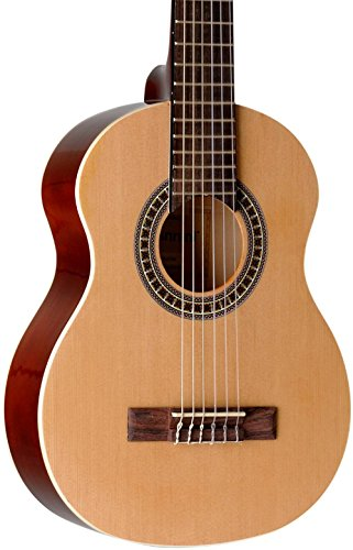 Giannini Guitars GN-R N Natural Finish Acoustic Guitar