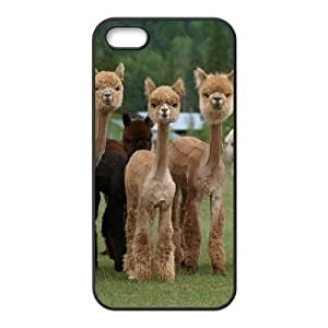 Alpaca Custom Cover Case with Hard Shell Protection for Iphone 5,5S Case lxa#920537