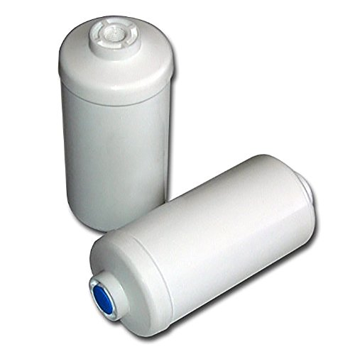 Berkey PF-2 Fluoride/Arsenic Replacement Filters, 4-Pack… by Berkey