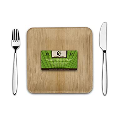 Disposable Eco Palm Paper Plates: Square Compostable, Biodegradable Heavy Duty Dinner Party Plate - Comparable to Bamboo Wood Fiber - Nice, Elegant Looking Plant Based Dishware: 25 Pack