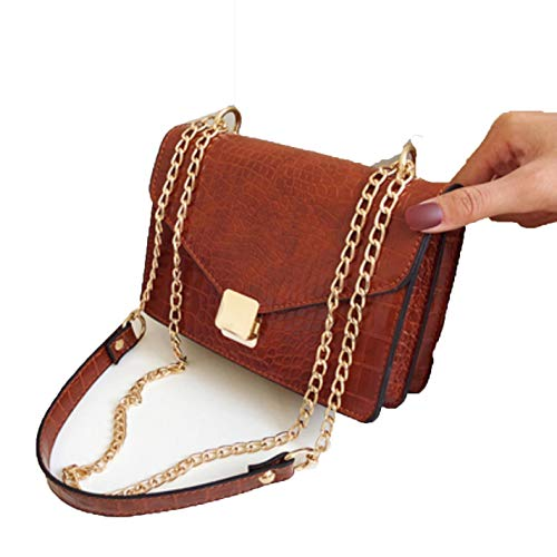 Crossbody Bags For Women Small Chain Handbag Small Bag (Ladies Pocketbook Jewerly Case)