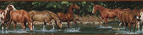 RoomMates RMK1016BCS Wild Horses Peel and Stick Wall Border