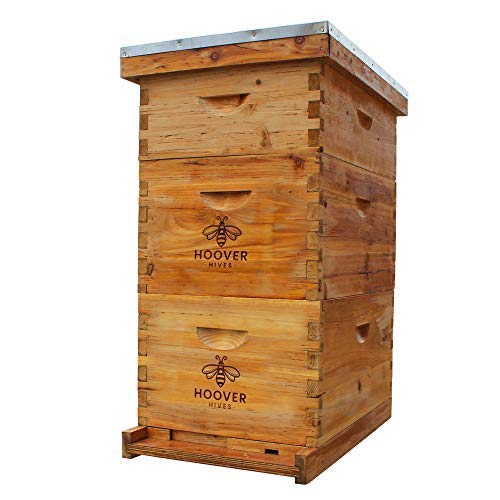 Natural Bees Wax Coated Hoover Hives 8 Frame Bee Hive Includes Frames and Foundations (2 Deep Box, 1 Medium Box)