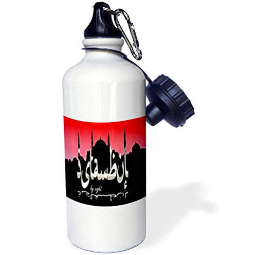 - 3dRose Taiche - Digital Art - Istanbul Typography - Istanbul by Night Skyline Cityscape with Sultan Ahmed Mosque - Flip Straw 21oz Water Bottle (wb_317471_2)