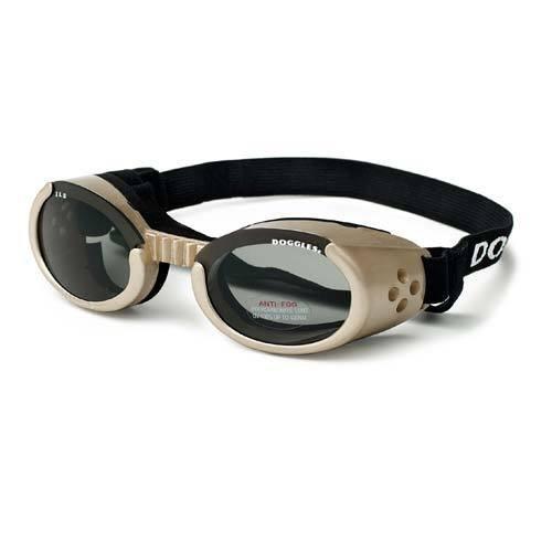 Ils Dog Sunglasses - Have Protection Sunglasses Should Uv