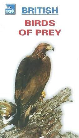 British Birds Of Prey Vhs Andrew Sachs Amazon Co Uk Video