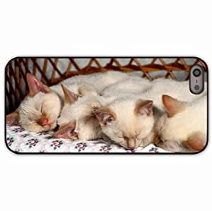 iPhone 5 5S Black Hardshell Case kittens sleep many Desin Images Protector Back Cover