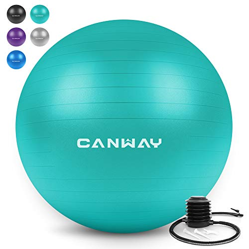 TheraBand Exercise Ball, Professional Series Stability Ball with 55 cm Diameter for Athletes 5 1 to 5 6 Tall, Slow Deflate Fitness Ball for Improved Posture, Balance, Yoga, Pilates, Core, Red