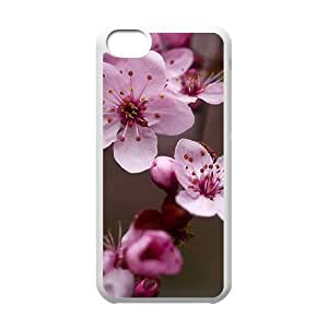 Beautiful cherry blossoms Customized Cover Case with Hard Shell Protection for Iphone 5C Case lxa#474501 by mcsharks