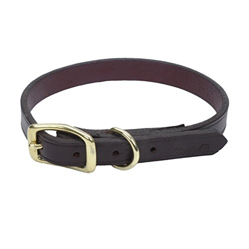 Circle T Leather Coastal Pet Products Town Dog Collar with Solid Brass Hardware, 5/8