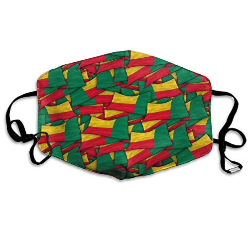Benin Flag Wave Collage Mouth Mask Unisex Anti-dust Cotton Face Mask for Men and Women, Boys and Girls