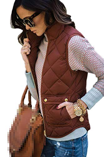 Adelina Women's Down Vest Warm Autumn Vest Mode Sleeveless Winter Stand Collar Front Pockets with Zipper Plain Color Coat Comfortable Outerwear Red