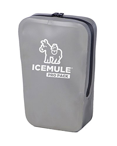 IceMule Pro Pack – Waterproof Storage Pouch/Dry Bag for Keeping Your Valuables Safe and Dry – Ideal for Your Wallet, Keys, Cell Phone and Sunglasses – Grey, Measures 10 x 10 x 4 Inches