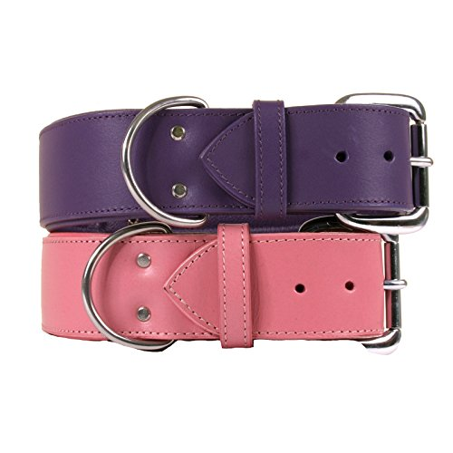 Dallas Luxury Leather Padded Dog Collar -Pink - 20