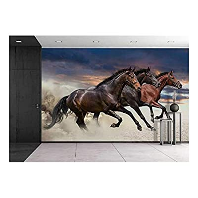 Horses Running at a Gallop Wall Decor 100
