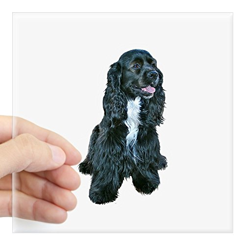 CafePress - Cocker (Black- White Bib) Square Sticker 3