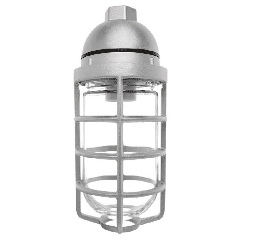 RAB Lighting VP100DG Vaporproof VP Ceiling Pendant Mount with Glass Globe and Cast Guard, A19 Type, Aluminum, 150W Power, 1/2'' Hub, Natural
