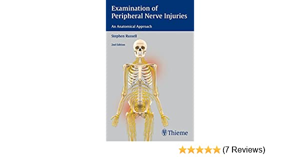 Examination Of Peripheral Nerve Injuries An Anatomical Approach
