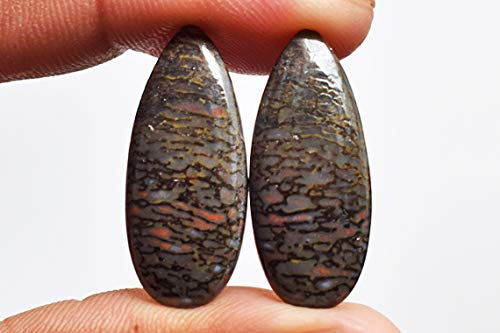 Earring Pair AG-11096 Awesome Pear Shape Utah Dinosaur Bone Pair Cabochon Size 25x11x3.5 MM