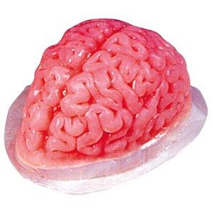 Molde de gelatina para Halloween, diseño de cerebro: Amazon.es: Juguetes y juegos