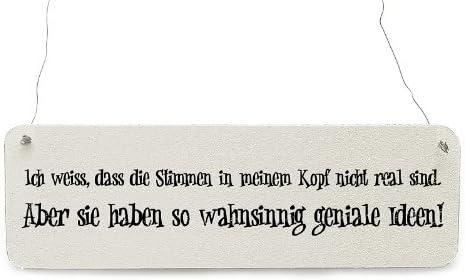 UND NICHT HIER! Shabby Vintage Schild Türschild SCHÖN DASS DU DA BIST