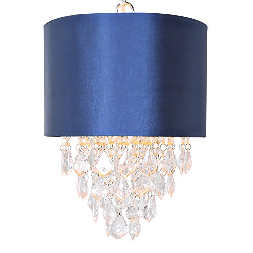 Navy Blue Pendant Light in Florida - 7