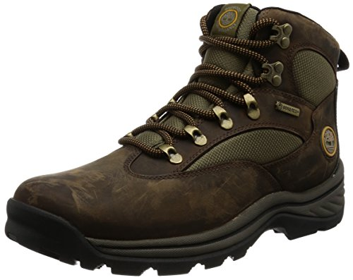 15130 chocurua trail gtx boot