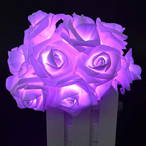 HOMREE String Lights, 20 LED/2M Battery Operated Rose Flower String Fairy Lights for Christmas, Valentine's, Wedding,Party,Indoor Decoration (Purple) ()