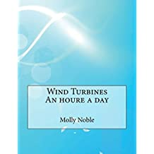 Wind Turbines an Houre a Day