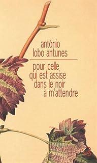 Pour celle qui est assise dans le noir à m'attendre, Antunes, António Lobo