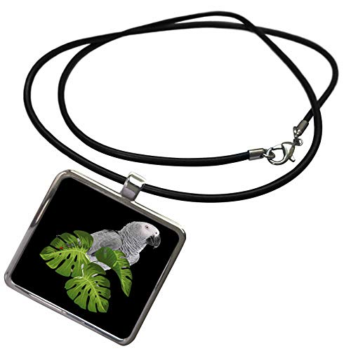 3dRose Sven Herkenrath Animal - Beautiful Grey Parrot On Black Background - Necklace With Rectangle Pendant (ncl_288307_1)]()