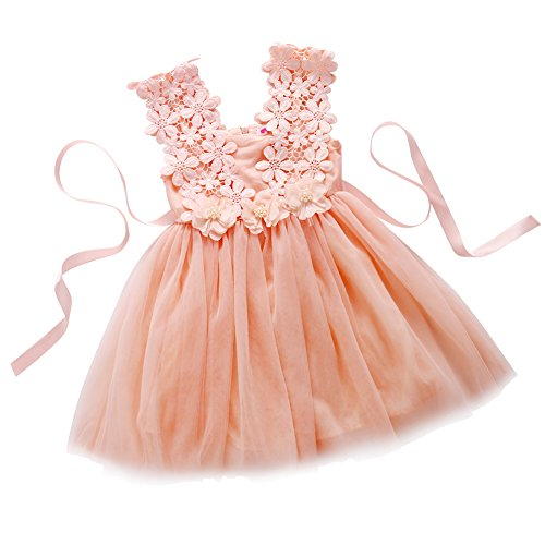 Elegant Girl (Elegant Feast Baby Girls Princess Lace Flower Tulle Tutu Gown Formal Party Dress (5-6 Years, Pink))