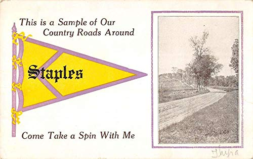 Staples Minnesota Scenic Roadway Pennant Flag Antique Postcard K431824