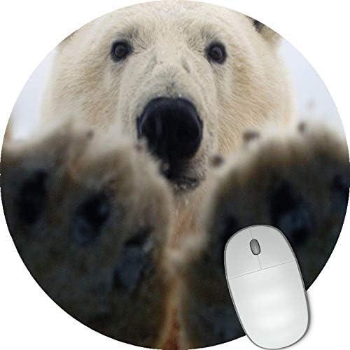 Polar Bear Round mosue pad Gaming Mouse pad Non-Slip Mouse pad